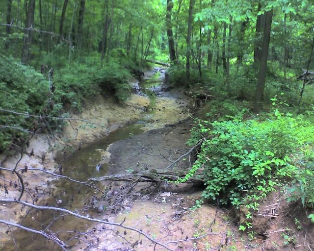 Creek610