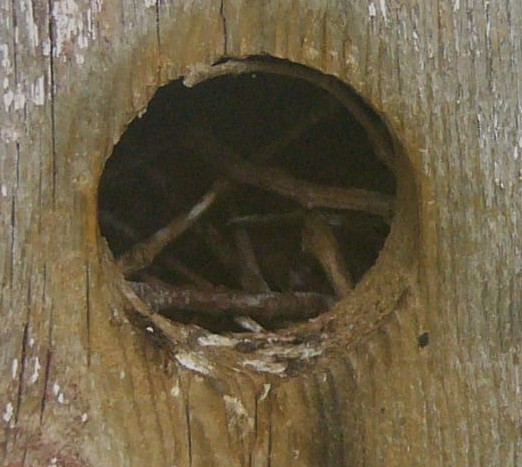 Bhousehole