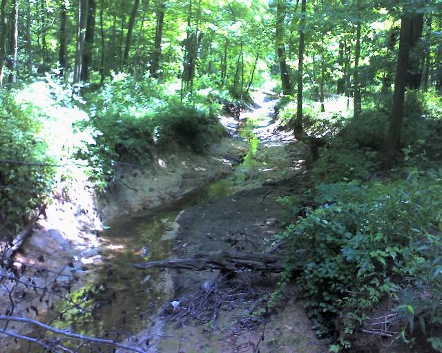 Creek624s