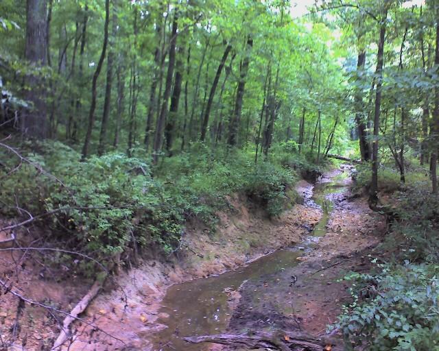 Creek804s